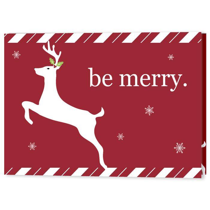 Merry Reindeer, Focus in Pix Holiday Christmas Card