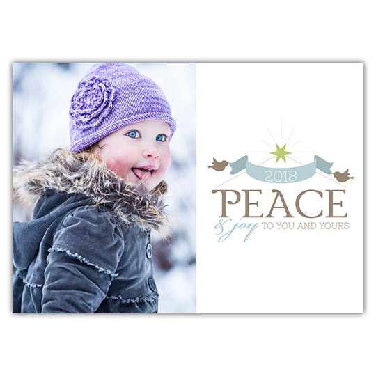 Peace Joy Birds Holiday Christmas Card